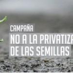 """Semillas: """"Hay vida después del agronegocio"""""""