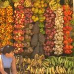 """""""La agricultura campesina es mejor productora de alimentos que los agronegocios"""""""