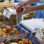 Soberanía alimentaria y la agenda climática hacia Paris – Boletín N° 219 del WRM