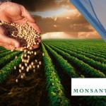 Duelo de gigantes y su impacto mundial: por qué Monsanto quiere quedarse con Syngenta
