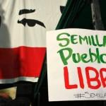 Venezuela prohíbe los cultivos OGM, en una de las progresistas leyes de semillas del mundo
