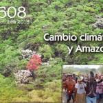 Amazonía: Oportunidad para un proyecto humano diferente