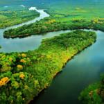 El cambio climático y la Amazonia: un grito de alarma