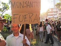 Monsanto-despido-periodista-Reuters