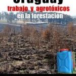 Uruguay: comunidades afectadas por agrotóxicos muestran avances en organización; ¿la carga de la prueba compete al Estado o a los fumigados?