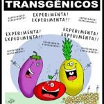 Transgénicos: caras y ojos