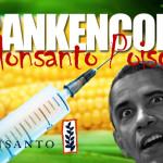 Monsanto y Obama en guerra química contra la naturaleza
