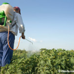 Amenazan pesticidas a agricultores en EU