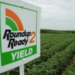 Estudio demuestra que Roundup, un herbicida, podría estar ligado al parkinson, cáncer y otros problemas de salud